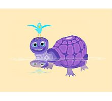 The Purple Turtle And A Bluebird Of Glee Photographic Print