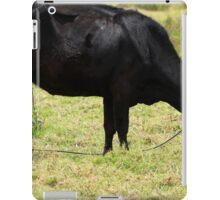 Grazing Black Cow iPad Case/Skin