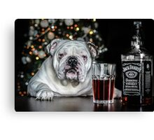Todays bulldog is brought to you by Jack  Daniels wiskey  Canvas Print