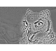 Metal Owl Photographic Print