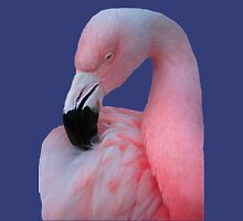 Pink Flamingo Mens V-Neck T-Shirt