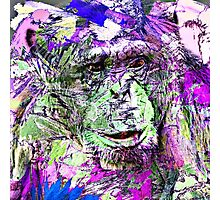 Animal Art Studio 20516 Photographic Print