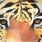 Tigers Eyes by Cherie Roe Dirksen