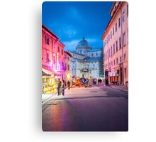 life in color Canvas Print