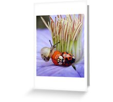 Just friends.... Greeting Card