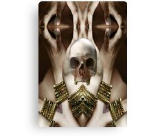 Skull Magic Canvas Print