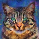 Cat by jean-louis bouzou