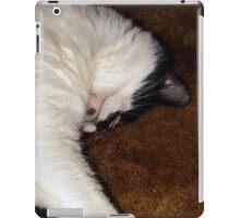 Sweet Quincy Sleeping iPad Case/Skin