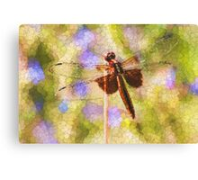 Bubbles The Dragonfly Canvas Print