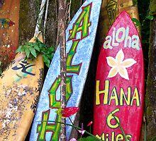Surf Maui by mijumi
