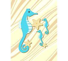 Blue Seahorses Graphic Art Photographic Print