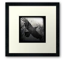 Into The Misty Forest Where A Crow Lives Framed Print