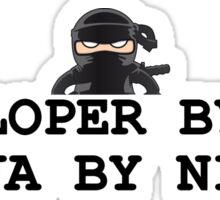 ninja developer programming computer Sticker