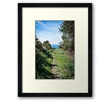Footpath to the coast Framed Print