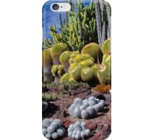 Cactus Collection - The Huntington Garden 1 iPhone Case/Skin