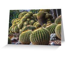 Cactus Garden 2 - The Huntington Greeting Card