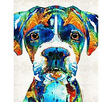 Colorful Boxer Dog Art By Sharon Cummings  Photographic Print