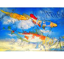 Life Is But A Dream - Koi Fish Art Photographic Print