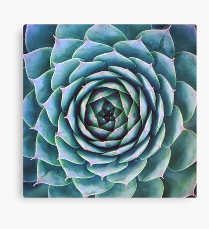 Earth Semp Canvas Print