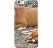 Newborn Foal iPhone Case/Skin