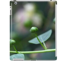 Buds of the caper bush, Capparis spinos. iPad Case/Skin