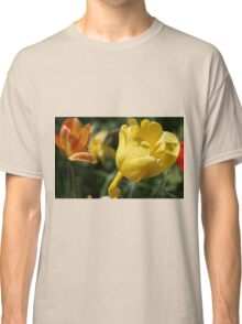Yellow Tulip with Friends Classic T-Shirt