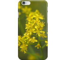 Flowers of woad or glastum iPhone Case/Skin