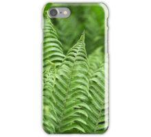 Leaves of Polystichum ferns iPhone Case/Skin