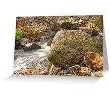 Silky Stream.... Greeting Card