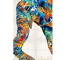 Colorful Elephant Art by Sharon Cummings Photographic Print
