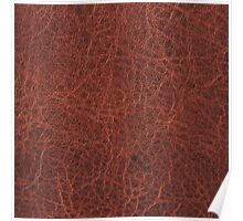 Faux Animal Skin, Leather Brown Poster