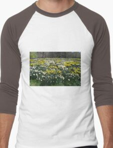 Altered Daffodils Men's Baseball ¾ T-Shirt
