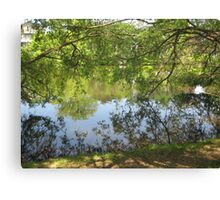 tree branch pond mirror  Canvas Print
