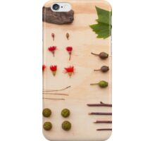 Melbourne Park Study iPhone Case/Skin