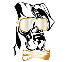 Cool Great Dane dog with sunglasses Photographic Print