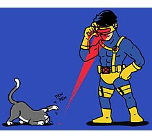 Lasers and cats Photographic Print
