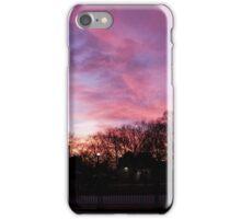 Sunset at Boston Common 3/1/16 iPhone Case/Skin