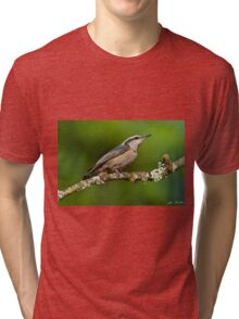 Red Breasted Nuthatch in a Tree Tri-blend T-Shirt