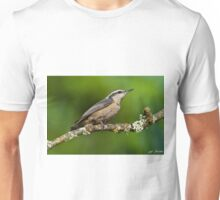 Red Breasted Nuthatch in a Tree Unisex T-Shirt