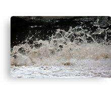 Flying froth Canvas Print