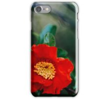 Pomegranate flower iPhone Case/Skin