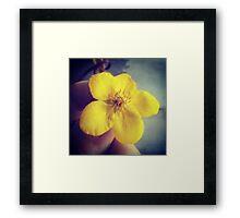 A Flower in Hand... Framed Print
