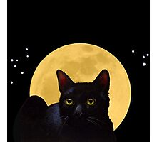 Cat And The Moon, A Night Watcher Photographic Print