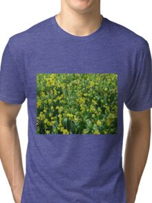 A Riot of Daffodils and Tulips - Keukenhof Gardens Tri-blend T-Shirt