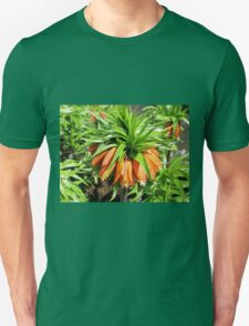 Bad Hair Day - Crown Imperial T-Shirt