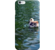 Swan in the water in the park. iPhone Case/Skin