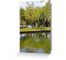 Trees reflected in the water in the park. Greeting Card