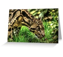 Clouded Leopard (3) Greeting Card