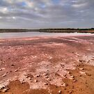 Coorong #4 by Bette Devine