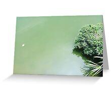 lake, green Greeting Card